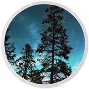Silhouette Of Tall Conifers In Autumn Round Beach Towel