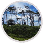 Silhouettes Of Wind Sculpted Krumholz Trees  Round Beach Towel