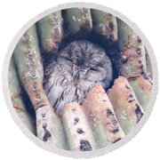 Sleepy Eye Round Beach Towel