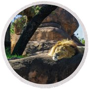 Sleepy Lion Round Beach Towel