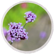 Round Beach Towel featuring the photograph Small Purple Flowers by Scott Lyons