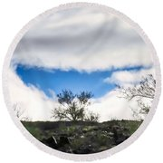 Round Beach Towel featuring the photograph Smile by Judy Kennedy