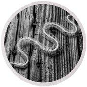 Snake Skeleton Black And White Round Beach Towel