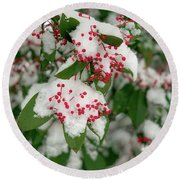 Snow Covered Winter Berries Round Beach Towel