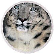 Snow Leopard Portrait Endangered Species Wildlife Rescue Round Beach Towel
