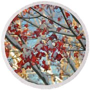 Snow On Maple Leaves Round Beach Towel