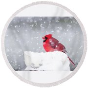 Round Beach Towel featuring the photograph Snowy Cardinal by Lori Coleman