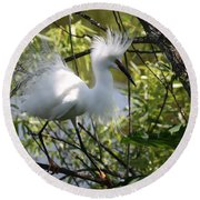 Round Beach Towel featuring the photograph Snowy Egret 4031202 by Rick Veldman