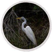 Snowy Egret On A Hot Summer Day Round Beach Towel