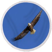 Round Beach Towel featuring the photograph Soaring Eagle by Lori Coleman