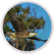 Round Beach Towel featuring the photograph Soaring Eagle by Tom Claud