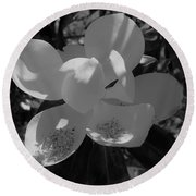 Southern Magnolia In Black And White Round Beach Towel