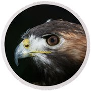 Sparkle In The Eye - Red-tailed Hawk Round Beach Towel