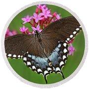 Spicebush Swallowtail Papilio Trollus Round Beach Towel