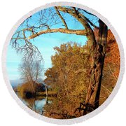Spirit In The Tree Round Beach Towel