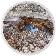 Round Beach Towel featuring the photograph Splashing Hot Water Drops In Yellowstone by Tatiana Travelways