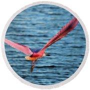 Spoonbill Wingspan Round Beach Towel