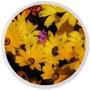 Spring In The Neighborhood Round Beach Towel