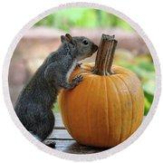 Squirrel And Pumpkin Round Beach Towel
