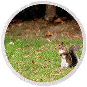 Round Beach Towel featuring the photograph Squirrel Stood Up In Grass by Scott Lyons
