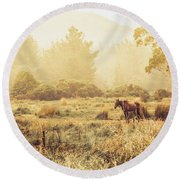 Stallion Homestead Round Beach Towel