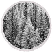 Standing Tall In The French Alps Round Beach Towel