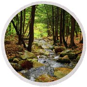 Round Beach Towel featuring the photograph Stream Rages Horizontal Format by Raymond Salani III