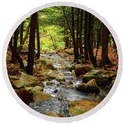 Round Beach Towel featuring the photograph Stream Rages Vertical Format by Raymond Salani III