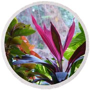 Round Beach Towel featuring the photograph In The Pink by Rosanne Licciardi