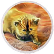 Striped Forehead Kitten Round Beach Towel