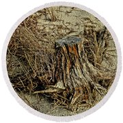 Stump At The Beach Round Beach Towel