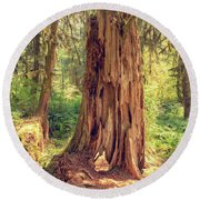 Stump In The Rainforest Round Beach Towel