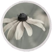 Round Beach Towel featuring the photograph Subtle Glimpse by Dale Kincaid