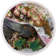 Succulents In A Boot Round Beach Towel