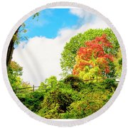 Sugar Maple Stands Out In Early Fall Round Beach Towel