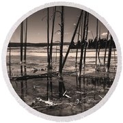 Round Beach Towel featuring the photograph Sulfur Field by Mae Wertz