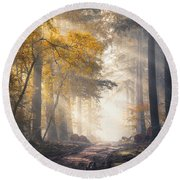 Sunbeams And Autumn Colors In The Misty Speulderbos Round Beach Towel