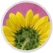 Round Beach Towel featuring the photograph Sunflower On Pink - Botanical Art By Debi Dalio by Debi Dalio