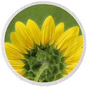 Sunflower Sunrise - Botanical Art Round Beach Towel