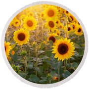 Sunflowers Field Round Beach Towel