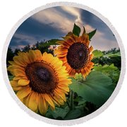 Sunflowers In Evening Round Beach Towel