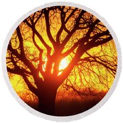 Round Beach Towel featuring the photograph Sunset And Tree Silhouette 03 by Rob Graham