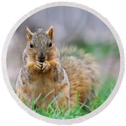 Super Cute Fox Squirrel Round Beach Towel