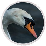Round Beach Towel featuring the photograph Swan Head Close Up On Blue Background by Scott Lyons