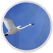 Swan On Blue Round Beach Towel