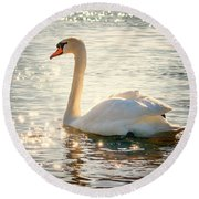 Swan On Golden Waters Round Beach Towel