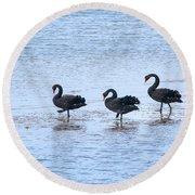 Swans On Parade Round Beach Towel