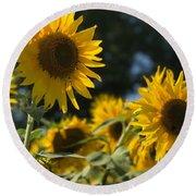 Sweet Sunflowers Round Beach Towel