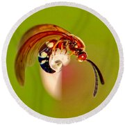 Swirly Wasp Round Beach Towel
