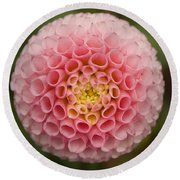 Round Beach Towel featuring the photograph Symmetrical Dahlia by Brian Eberly